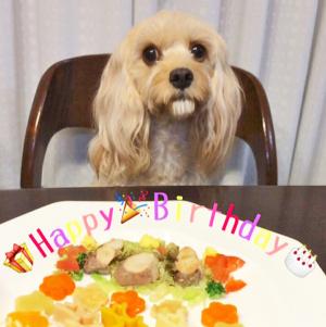 ルーシェちゃんの誕生日